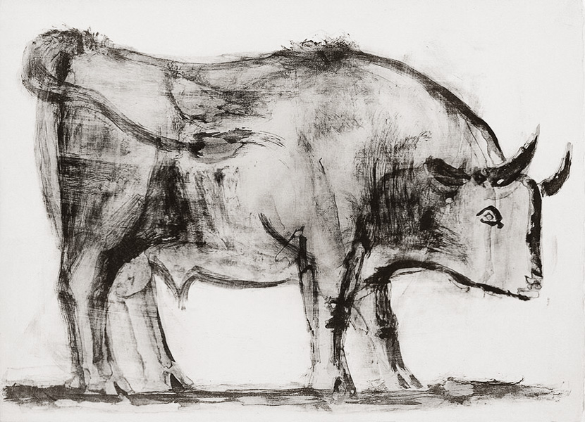 Картина Пабло Пикассо. Бык. Стадия 1. 1945, 5 декабря