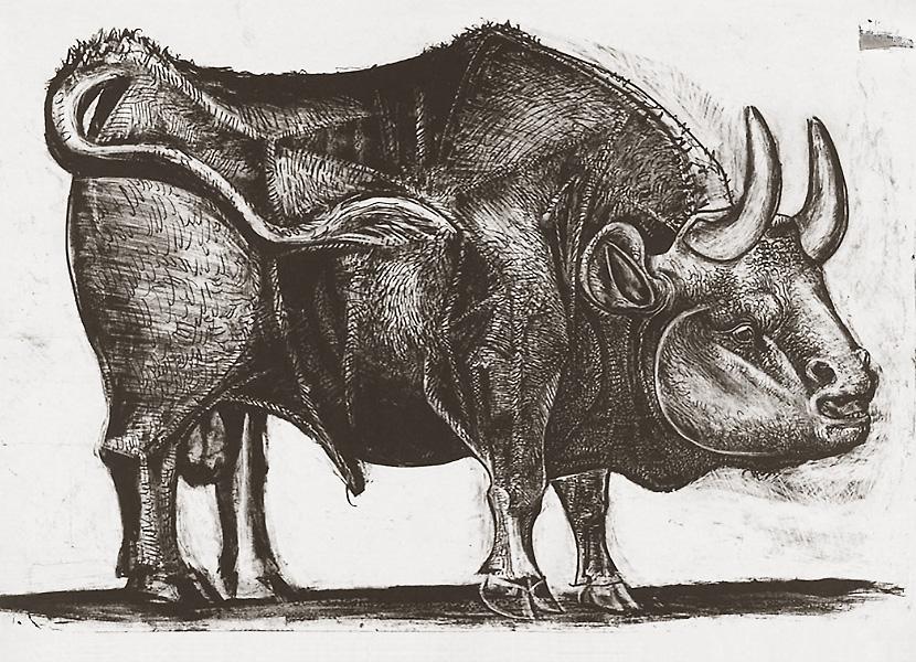 Картина Пабло Пикассо. Бык. Стадия 3. 1945, 18 декабря