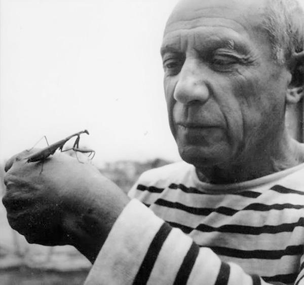 Пикассо и богомол, Валлорис, 1952. Робер Дуано, фото 2